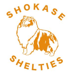 Shokase Shelties Logo